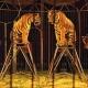 Animaux de cirque et le droit